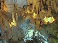 Asociatia Speologica Exploratorii