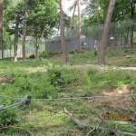 Gradina Zoologica Resita - tarcul ursilor